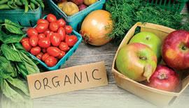 Armonizarea alimentației Bio în locațiile Spa; Alegerea hranei inteligente!